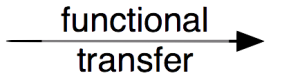 pmn-legend-functional_transfer