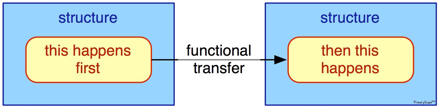 Functional Transfer